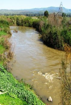 The Jordan River, Israel Beautiful World, Beautiful Places, Israel Palestine, Promised Land, Holy Land, Wonders Of The World, Samar, Places To Visit, Around The Worlds