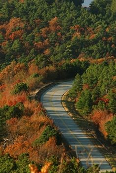 Talimena National Scenic Byway...Known for it's foliage (I love Fall).