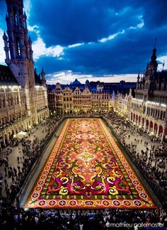 Flower carpet in Brussels, Belgium-  there was no flower carpet in Feb. when we were there, but this is a great picture of the square