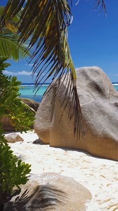 travel destinations Tropical beaches - The Seychelles Beautiful Places To Travel, Romantic Travel, Beautiful Beaches, Cool Places To Visit, Romantic Vacations, Vacation Places, Dream Vacations, Italy Vacation, Honeymoon Destinations
