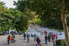 hong kong park - Google 搜尋