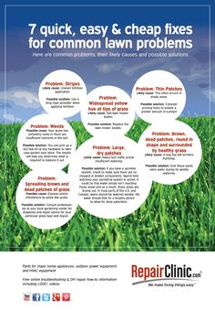 RepairClinic - 7 Easy and Quick Lawn Fixes infographic