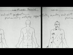 Ferguson jury considers conflicting forensics