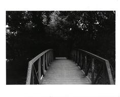 Stairs, Artwork, Photography, Instagram, Decor, Stairway, Work Of Art, Photograph, Decoration