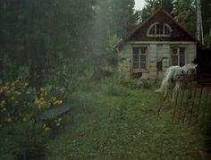 Cottage...with a random horse. Somehow I want this.