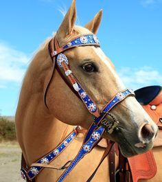 Red, White and Blue would make great Rodeo Court Tack! Jozee Girl package deals are great! Western Bridles, Western Horse Tack, Western Riding, Blue Horse, My Horse, Horse Love, Horse Riding, Riding Gear, Horse Tips