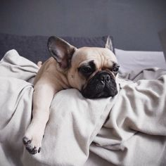 Just 5 More Minutes...