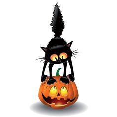 Free vector illustration of witch cat scathing pumpkin happy Halloween day template