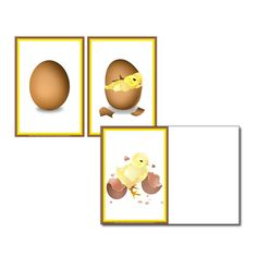 Sequence Cards - Easter - Egg Hatching
