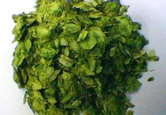 Northern Brewer Hops use in homebrewing and sleep pillows 100g