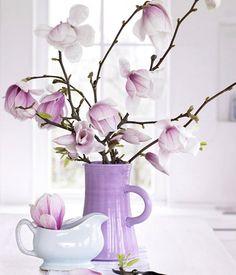 Traumhafte Magnolien - Fower Power: Schönes mit Blumen 5 - [LIVING AT HOME]