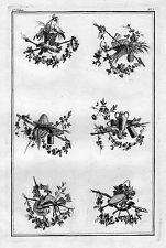 1770 - Ornament Garten Gärtnerei Blumen Floristik flowers Kupferstich 60622