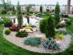 Гравийный сад, подборка - Садоводка