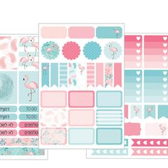 Weekly Planner Kit - everyday stickers - flamingo pink and turquoise