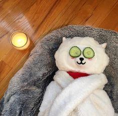 - ̗̀@ b y u n g i p a w s. Stuffed Animals, Bts Cute, Bts Meme Faces, Bts Reactions, Bts Merch, Cute Memes, Wholesome Memes, Kpop Aesthetic, Reaction Pictures