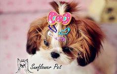 Jepit Rambut Anjing  Deskripsi: jepit rambut untuk anjing kesayangan kamu yang selalu ingin tampil cantik dan menarik. send random Ukuran: 2.5cm  Order via WhatsApp 087896532077 & LINE @wec7207p (pake @) #puppies #onlinepetshop #petshop #makanananjing #puppy #sofa #pawbulous #petshopindo #petshopjambi #petbed #dogfood #indodog #mainananjing #doglover #cute #anjinglucu #hamster #catbed #dogbed #aksesorisanjing #aksesoriskucing #talianjing #dogshirt #bajuanjing #dogclothing #tasanjing…