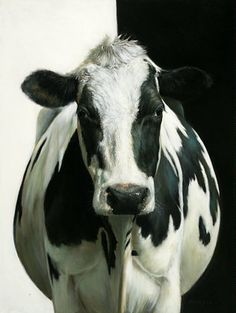 black and white - cow - Evi the Cow, painting - oil on canvas - Alexandra Klimas Chicken Painting, Cow Painting, Farm Animals, Animals And Pets, Deer Skull Art, Cow Photos, Holstein Cows, Happy Cow, Cow Art