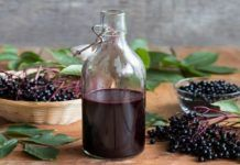 Benefits of Elderberry Syrup & Syrup Recipe Elderberry Growing, Elderberry Plant, Elderberry Syrup, Seasonal Allergies, Acai Berry, Pcos, Real Food Recipes, Herbalism, Herbs