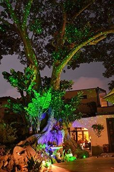 BlissLights Spright Laser Starfield Projector Green Firefly lights for home, business or event sites by Lasers and Lights, http://www.amazon.com/dp/B01GUEWK48/ref=cm_sw_r_pi_dp_x_jZdCybWV3SAMD