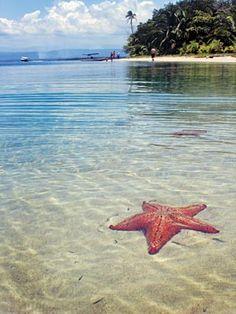 Playa de las estrellas (Panamá) -Las 10 mejores playas del mundo | Lugares de Viaje