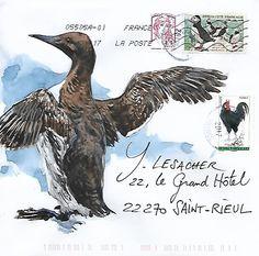 Courrier à plumes / Expédié depuis Ouessant Mail Art Envelopes, Addressing Envelopes, Illustrations, Illustration Art, Festival Interceltique, Weird Birds, Sound Art, Envelope Art, Bird Artwork