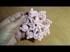Flor estrela dalva - Postmoney