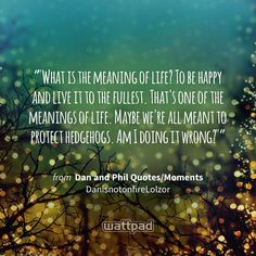 """""""""""What is the meaning of life? To be happy and live it to the fullest. That's one of the meanings of life. Maybe we're all meant to protect hedgehogs. Am I doing it wrong?"""""""" - from Dan and Phil Quotes/Moments (on Wattpad) https://www.wattpad.com/95312693?utm_source=ios&utm_medium=pinterest&utm_content=share_quote&wp_page=quote&wp_originator=3VfjVityRqc%2Fzn5kWl0NaELHJCilX8Wu6fn8xG0VdaTXSY%2Bi%2FIt9WttY4QD9rhoKg5FLQCvu35mP6pkdZDJao80EAvvRaiewj%2FWm1oWHDrWs9NnUK%2Bw3%2FlSywot9DGar #quote…"""