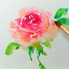 How to paint a pink rose in watercolor