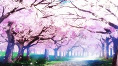 Sakura anime GIF beautiful day sky GIF by Hikka_chan Anime Cherry Blossom, Cherry Blossom Background, Cherry Blossoms, Episode Interactive Backgrounds, Episode Backgrounds, Live Backgrounds, Cute Wallpaper Backgrounds, Aesthetic Gif, Aesthetic Wallpapers