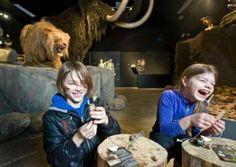 Natuurmuseum Brabant, tilburg