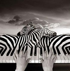 """Love is like playing the piano. First you must start with the rules then forget the rules and play from your heart."" Linda Saint-Pere"