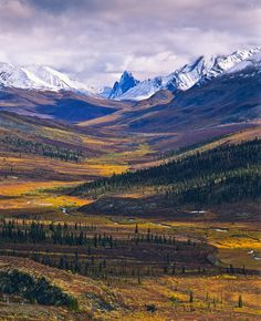Tombstone Valley. Yukon Territory.
