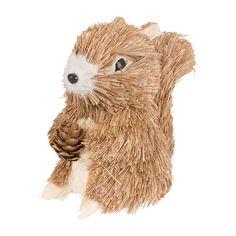 Eekhoorntjes zijn zo'n beetje de schattigste diertjes uit het bos. Die wil je toch ook tijdens de herfst in huis hebben?
