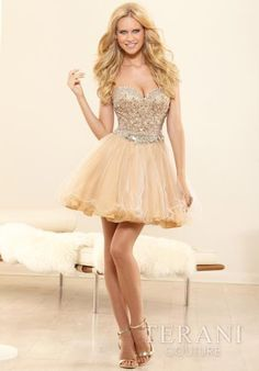 2014 Terani Fitted Bodice Prom Dress P3012