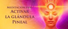 Activar la glándula Pineal (Meditación) http://reikinuevo.com/activar-glandula-pineal-meditacion/