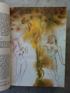 Image result for dali illustrations