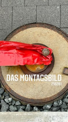 the monday picture 210201 - das montagsbild 210201 'conny's artwork' by sueessART