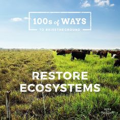 Restore Ecosystems. by Kiss The Ground