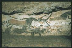 MONTIGNAC (Dordogne, 24). Grotte de Lascaux. Bilan des études. Récapitulation. Légende : Salle des taureaux, paroi gauche (nord) : avant-train d'un grand aurochs présumé femelle dont le pelage est indiqué par de petites taches noires, entouré de plusieurs chevaux noirs de profil droit, dont un est peint sur son flanc. On aperçoit un petit groupe de cervidés rouges aux ramures très développées qui leur font face. Auteur du cliché :