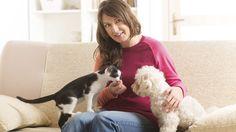 Haustiere können vom Vermieter nicht mehr grundsätzlich verboten werden. Dennoch lohnt es sich, das Gespräch mit dem Vermieter zu suchen. (Quelle: Thinkstock by Getty-Images)
