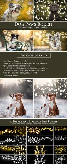 Creative paws photo overlays – great for mini sessions with animals, shelter pictures etc. 10 different dog paws photo overlays, BONUS – desaturated black & white version included, JPG files with black background, work with any editing program that allows using layers, suitable for photos up to 5000 x 3500px and smaller, 300 dpi – high resolution, great for prints, super easy to use.