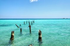 An old, ruined jetty in the stunning waters of the Spanish Lagoon, Aruba. I went to find hummingbirds, but couldn't resist this shot.