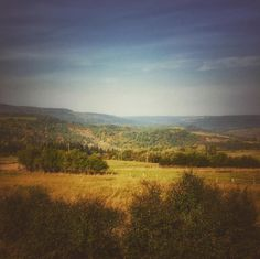 #Poland #Polska #trekking #mountains #instamountains #nature #naturephotography #naturephotos #natureaddict #natur_perfection #naturelovers #rsa_nature #rsa_mountains #bestnatureshot #landscape #landscape_lovers #instagood #photooftheday #picoftheday #pictureoftheday #bestoftheday #bieszczady#mobilnytydzien103