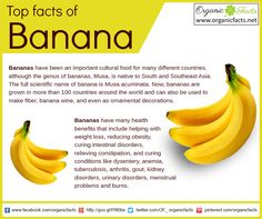 Bananas aid in weight loss, reducing obesity, curing intestinal disorders and relieving constipation. Read more