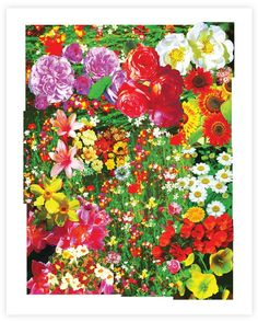 floral giclee print
