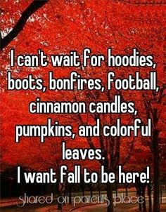 I love all of these things, but I do NOT want fall to be here! As much as I love it, it means that winter will be here soon. Happy Fall Y'all, Best Seasons, Hello Autumn, Fall Harvest, Meeting New People, Fall Season, Fall Halloween, Halloween Stuff, Halloween Pumpkins