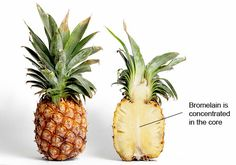 Red Letter food for April: PINEAPPLE med. pineapple yields 3 cups of cut fruit). Pineapple is ripe if top center leaves pull out easily, distinct crevices surround each section, and fruit is pliable to touch. Quality fruit is heavy for size. Pineapple Detox, Eating Pineapple, Pineapple Benefits, Frozen Pineapple, Pineapple Jam, Canned Pineapple, Healthy Smoothies, Smoothie Recipes, Fruit Quiz