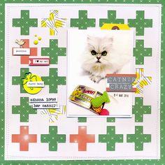 Catnip+Crazy - Scrapbook.com
