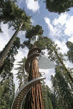 Dieses Baumhaus Lässt Kindheitsträume Wahr Werden   Green ... Das Magische Baumhaus Von Baumraum