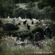 It's not that I love spending so much time in cemeteries… it's just that they are so photogenic. Thi sis another from the old part of Auckland's Waikumete Cemetery in West Auckland. Perfect place to bring a blanket and a picnic lunch.